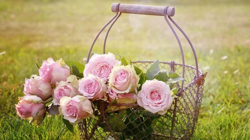 かごに入っている花